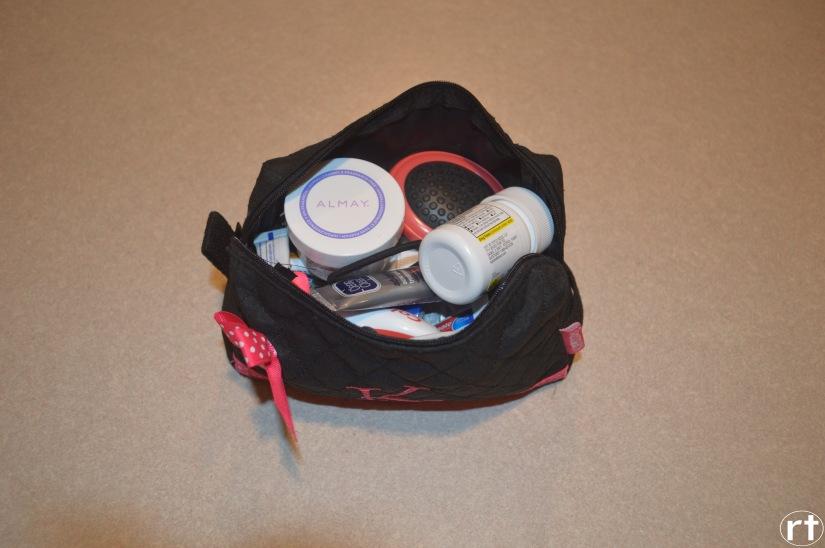 cosmetic bag 1