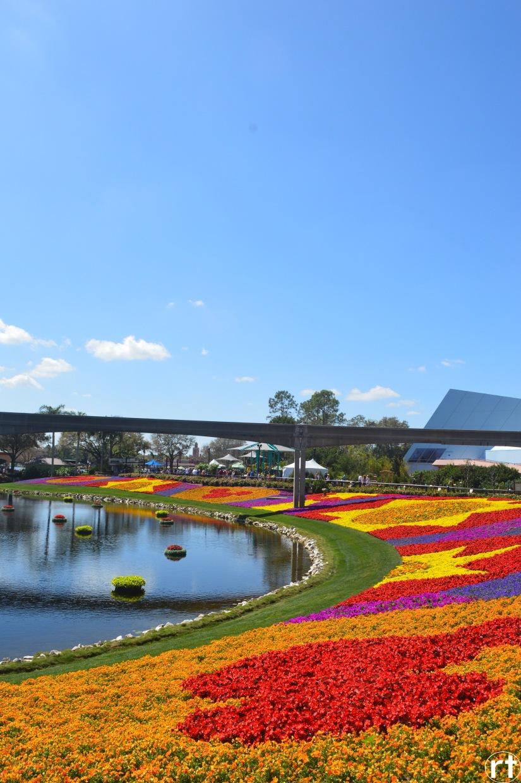 Epcot Flowers Disney