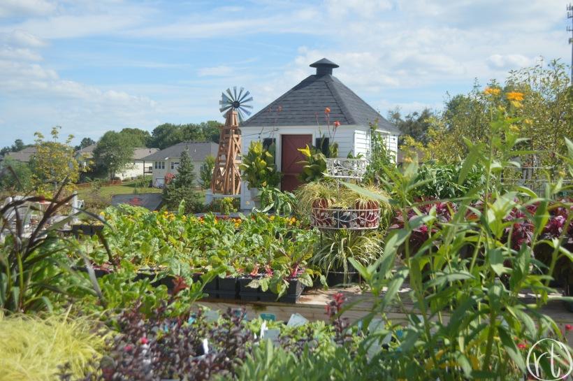 Helmi's Gardens Greenhouse Columbia MO