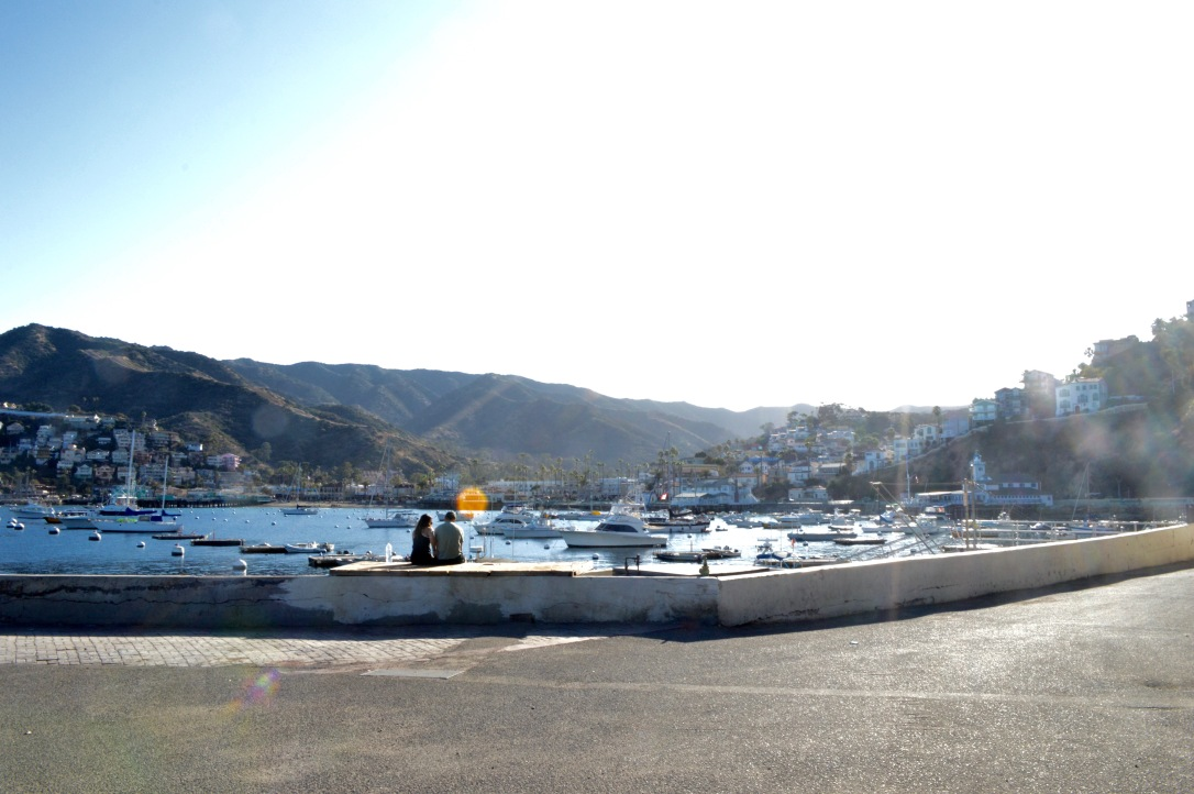 Catalina Island Day Trip Travel