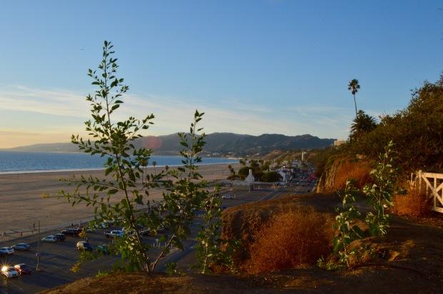 Palisades Park Ocean Mountains Santa Monica California