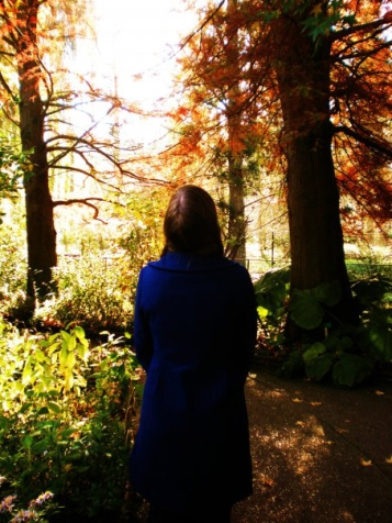 Diana Stegall France Study Abroad Forest