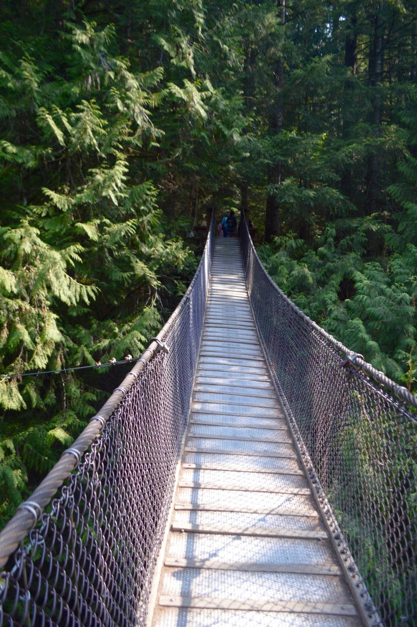 Lynn Canyon Park North Vancouver Canada